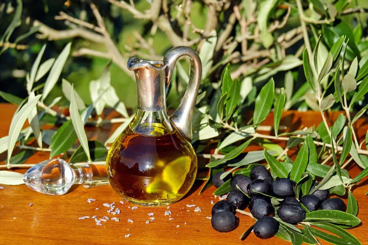 Olive season in North Cyprus